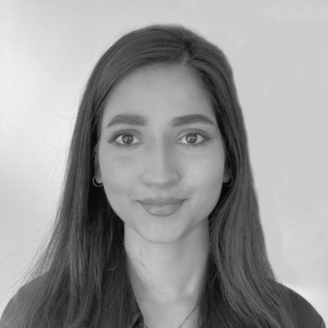 Shimona Fay Noronha Consultant